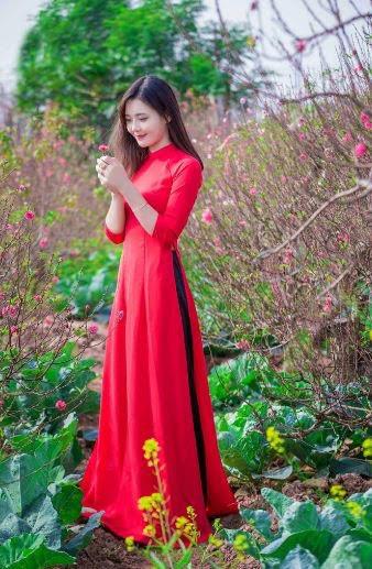 vải áo dài trơn màu đỏ